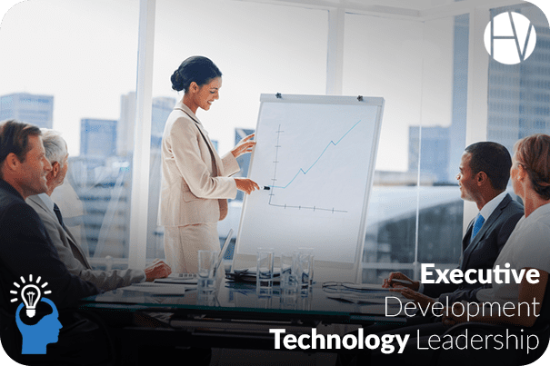 Executive Development: Technology Leadership